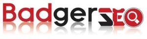 Logo image for Badger SEO